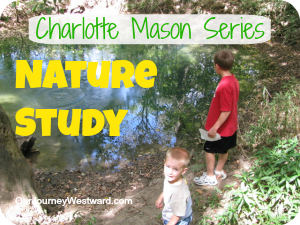 Charlotte Mason Style Nature Study | Our Journey Westward