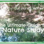 Ultimate Guide to Nature Study