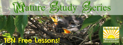 Nature Study Series - Ten Free Lessons from Shining Dawn Books (NaturExplorers )