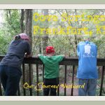 Cove Springs Nature Walk