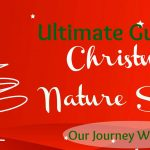 Christmas Nature Study Ideas Galore