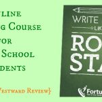 Online Writing Course: Rock Star Essay