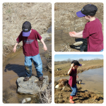Little boys learn nature actively through their five senses. Let them learn. They'll love it