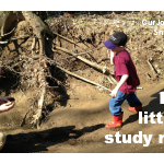Little boys learn nature actively through their five senses.  Let them learn.  They'll love it!