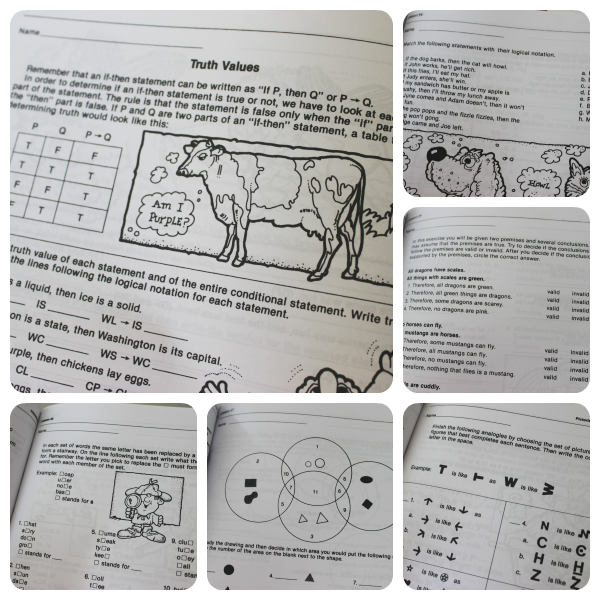 These are sample pages from Bonnie Risby's awesome logic workbooks.