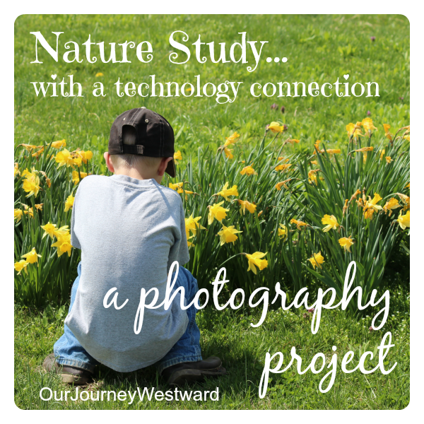 This nature study photography project is good for all ages