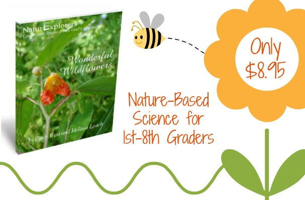 Wonderful Wildflowers NaturExplorers study is great for spring, summer and fall studies