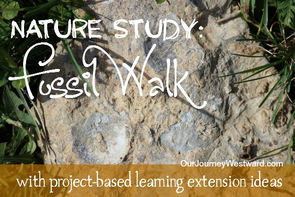 Enjoy this nature walk any time of the year!  Includes fun follow-up ideas, too.