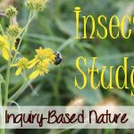 7 Things My Son Wants You To Know About Insect Study