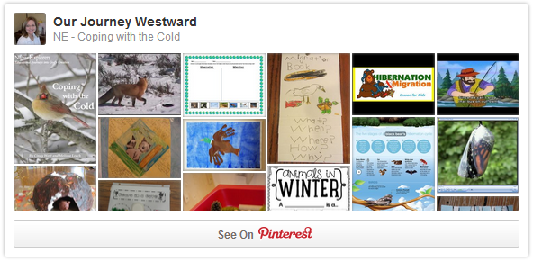 Coping with the Cold - Winter Pinterest Board