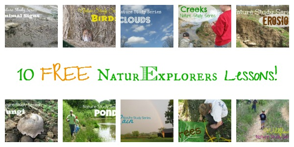 NaturExplorers lessons dive deep in nature study.