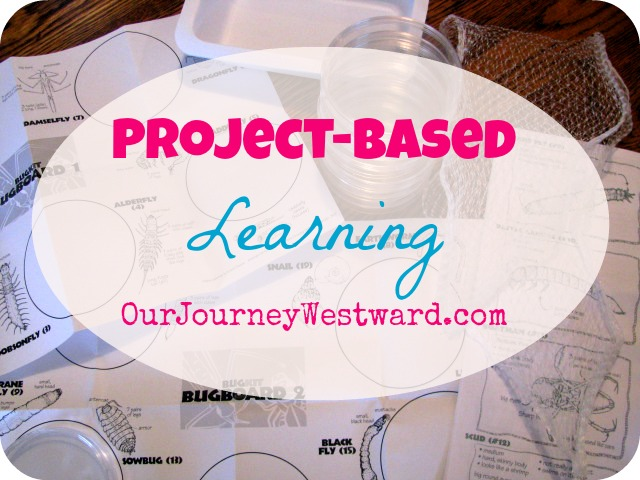 How to Incorporate Project-Based Learning Into Your Homeschool