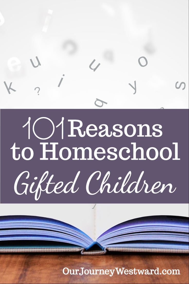 101 Reasons To Homeschool Gifted Children