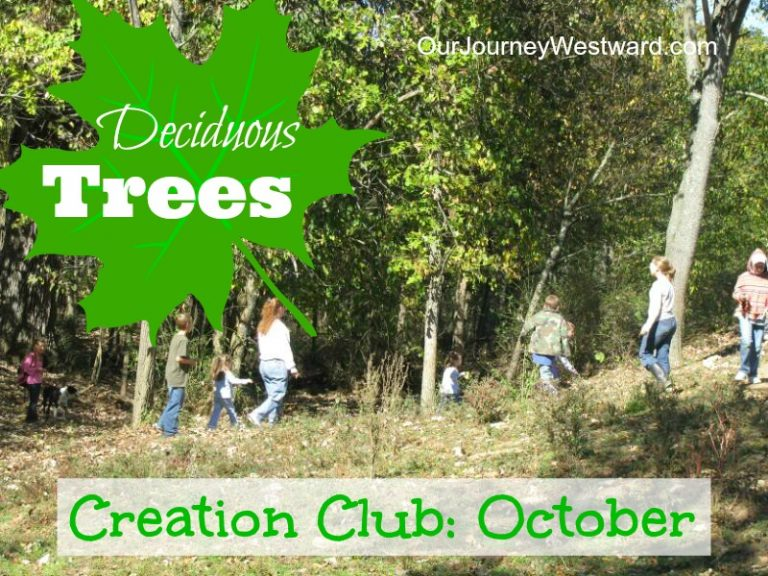 October's Creation Club – Trees