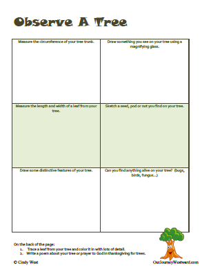 "Free ""Observe a Tree"" notebooking page from ShiningDawnBooks.com"