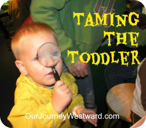 Taming the Toddler