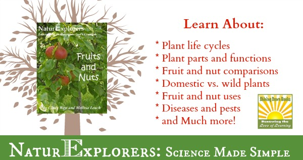 NaturExplorers Fruits and Nuts gives you a bazillion ideas for nature study and/or unit study lessons.