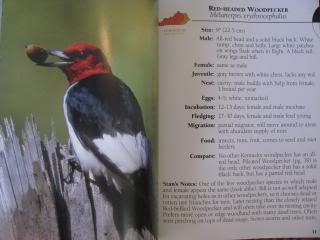 Adventure Publication Field Guides