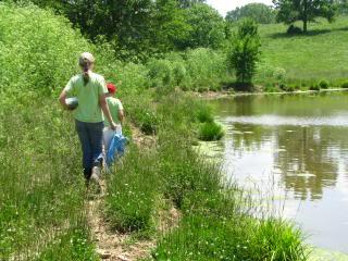Late Spring Pond Study