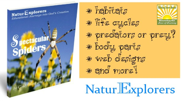 Spectacular Spiders: 25+ Nature Walks and everything you need for a full spider unit study!