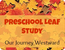 Preschool leaf study - art, math and science for little people