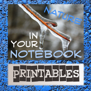 Nature In Your Notebook Printables