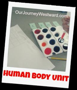 Human Body Unit Study