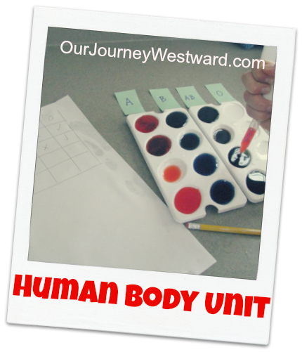 Human Body Unit Study: covers all body systems; literature-based; hands-on