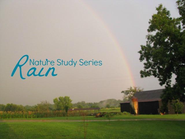 Nature Study: Rain