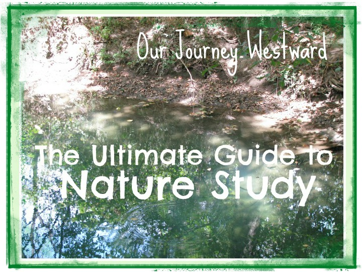 Enormous resource guide for nature study