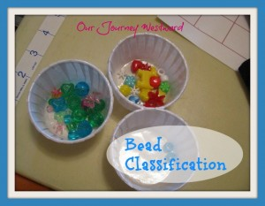 Bead Classification