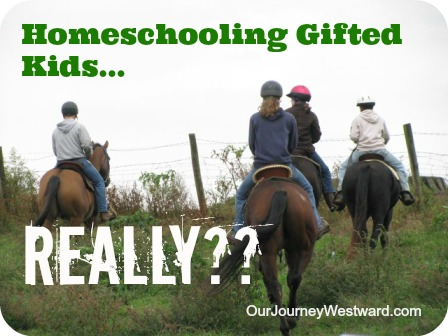 Homeschooling Gifted Kids…Really?