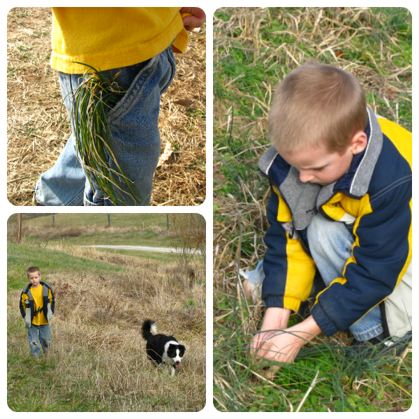 A Christmas Nature Walk Idea from Our Journey Westward