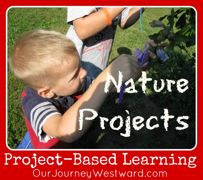 Project-Based Learning: NaturExplorers