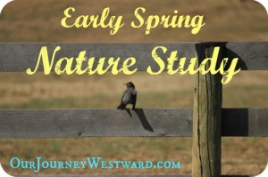Nature Study Topics for Early Spring