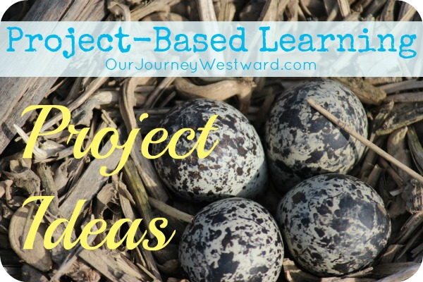 Tons of project ideas for project-based learning
