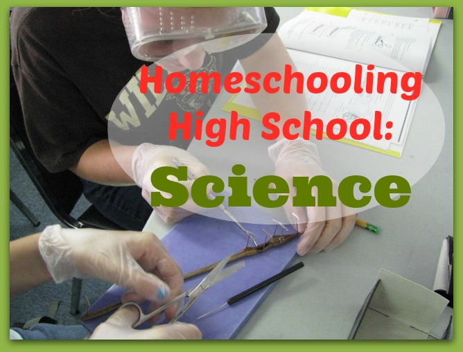 High School Science from Cindy at Our Journey Westward