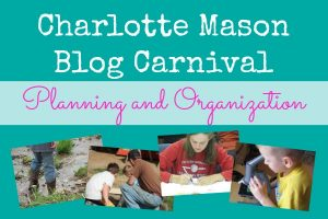 Planning and Organization CM Carnival at Our Journey Westward
