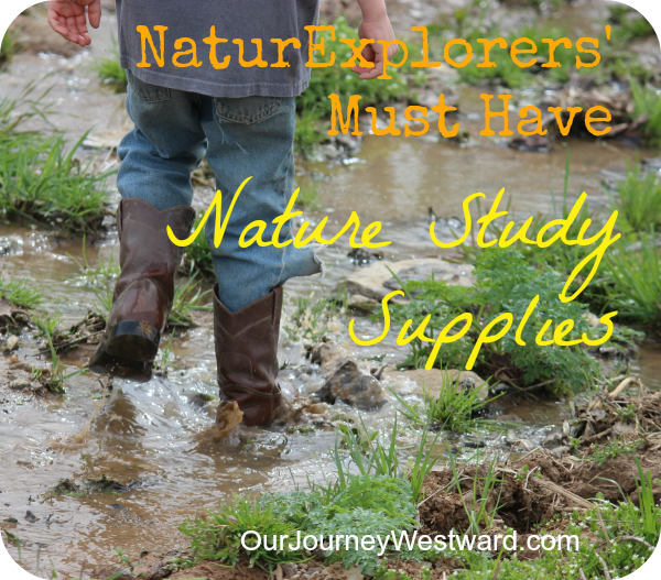 Top 10 nature study supplies to have on hand