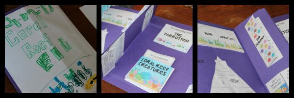 Coarl Reef Lapbook as part of Australia Unit Study