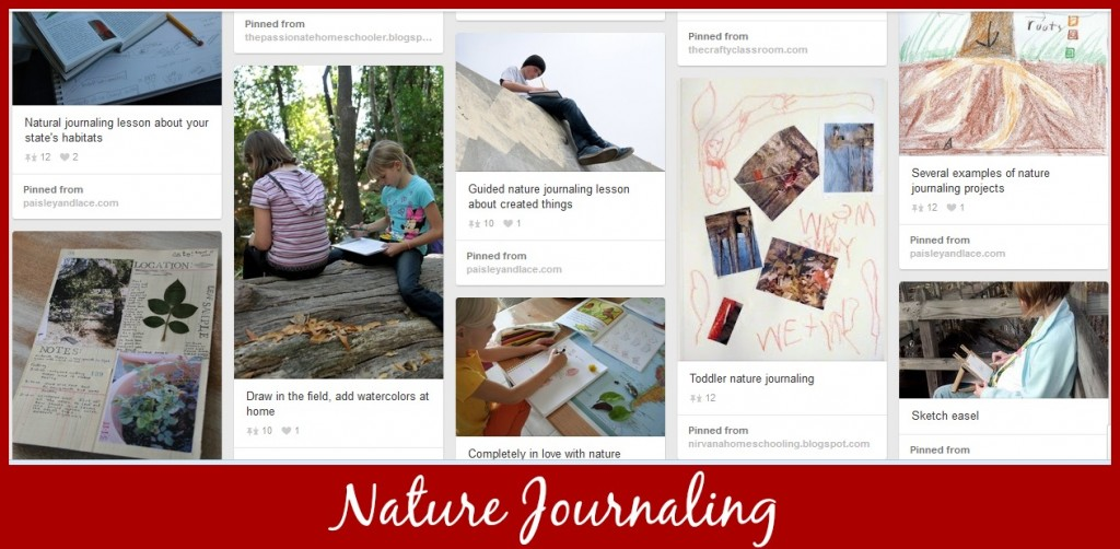 Cindy West's Nature Journaling Pinterest Board
