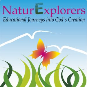 NaturExplorers: Renewing a love for learning through creative nature study curriculum that can be used with any homeschooling style
