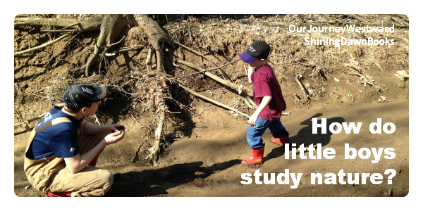 How do little boys study nature?