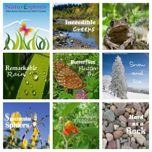 NaturExplorers Studies are perfect for teaching nature & science to 1st-8th graders!