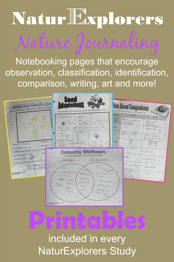 NaturExplorers studies are available on more than 20 nature topics.  Each study includes several printable nature notebooking pages.