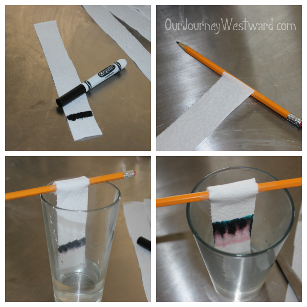 Chromatography: a fun activity to separate mixtures