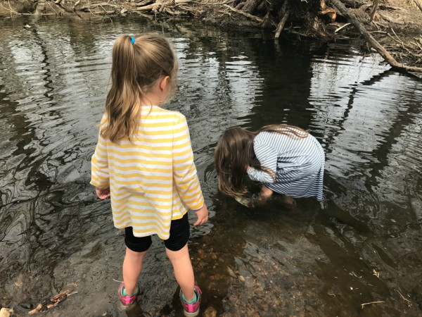 Hands-On Nature Study: Five Weeks at the Creek