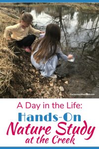 A Day in the Life: Hands-On Nature Study at the Creek