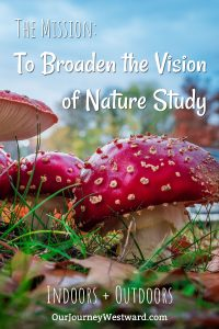 Is your vision of nature study simply that of nature walks? It can be so much more! #homeschool #naturestudy