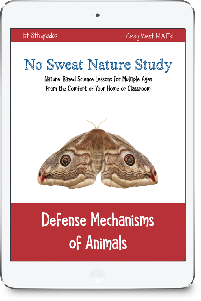 Defense Mechanisms of Animals